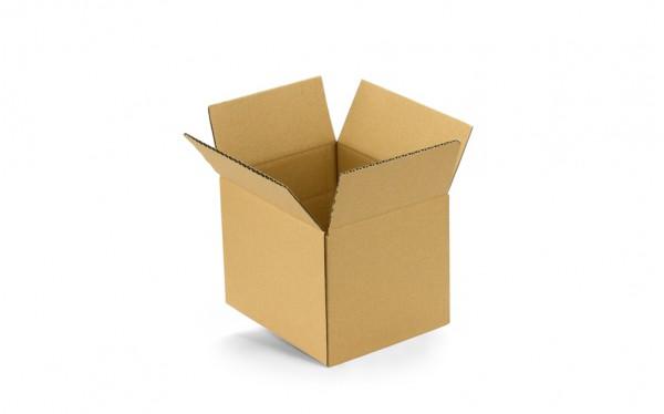 Paketkarton EP1 230x130x150mm FEFCO 0201